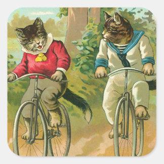 Gatos del vintage en la bicicleta pegatina cuadrada