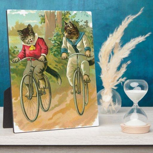 Gatos del vintage en la bicicleta placas de madera