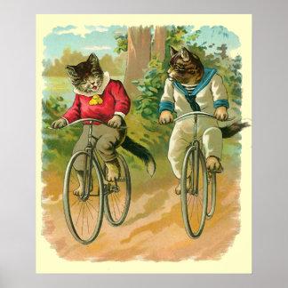 Gatos del vintage en la bicicleta póster