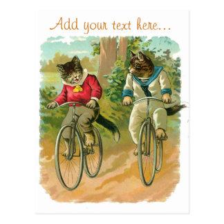 Gatos del vintage en la bicicleta tarjetas postales