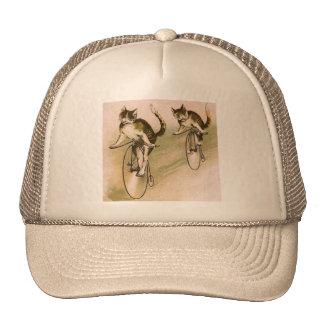 Gatos del vintage en las bicis gorras