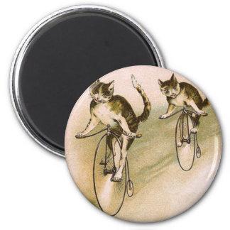 Gatos del vintage en las bicis imán