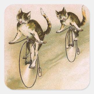 Gatos del vintage en las bicis pegatina cuadrada