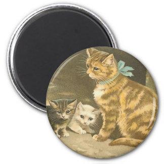Gatos del vintage imán para frigorífico