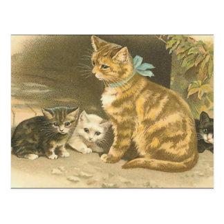 Gatos del vintage tarjeta postal