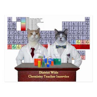 Gatos divertidos de la química postal