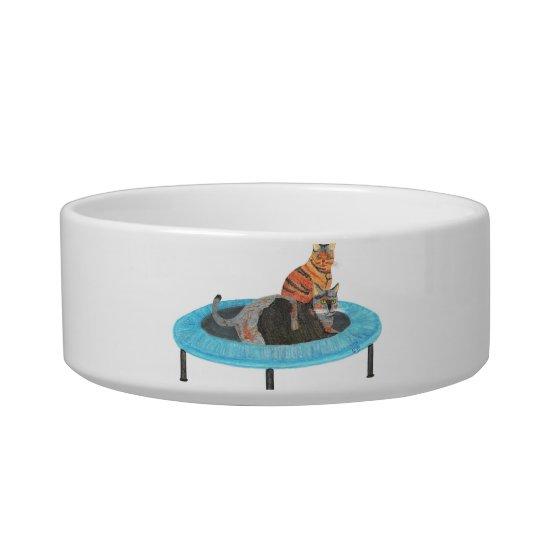 Gatos divertidos que pintan, plato del trampolín comedero para mascota