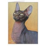 Gatos Electra del gato de la esfinge de Sphynx Felicitaciones