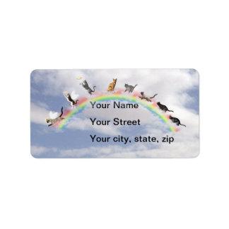 Gatos en el puente del arco iris en nubes etiquetas de dirección