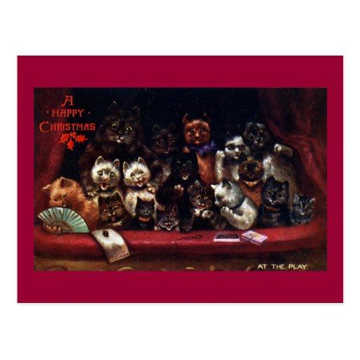 Gatos en el teatro para el navidad postales