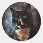 Gatos en espacio etiquetas redondas