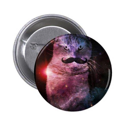 Gatos en espacio pin