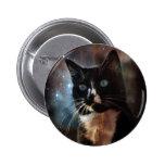 Gatos en espacio pins