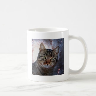 Gatos en espacio taza
