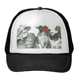 Gatos en gorras
