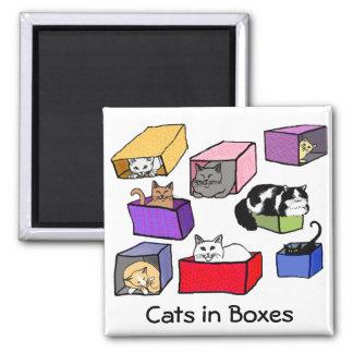 Gatos en imán colorido de las cajas