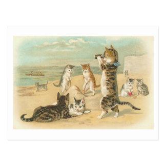 """""""Gatos en postal del vintage de la playa"""""""