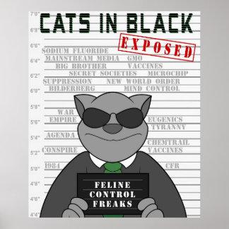Gatos en poster expuesto negro