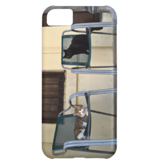 Gatos en silla funda para iPhone 5C