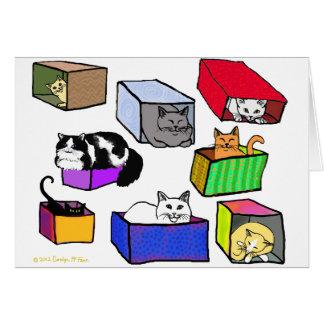 Gatos en tarjeta de las cajas