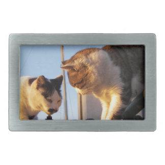 Gatos en un Boatyard Hebillas De Cinturon
