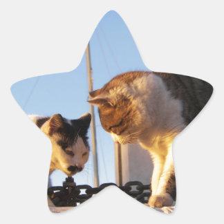 Gatos en un Boatyard Calcomania Cuadrada Personalizada