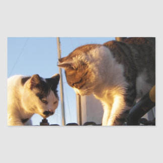 Gatos en un Boatyard Pegatina Rectangular