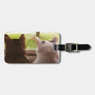 Gatos - etiqueta del equipaje de Abbie y de Momo Etiqueta Para Maleta