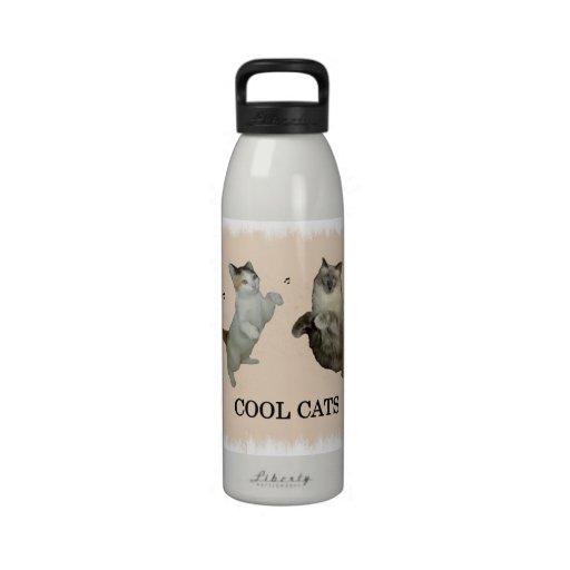 Gatos frescos botellas de agua reutilizables