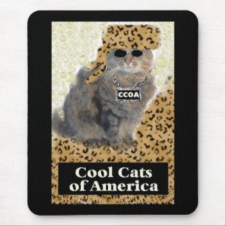 Gatos frescos de América Alfombrillas De Ratones