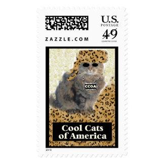 Gatos frescos de América Estampilla