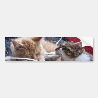 Gatos frescos de la nieve, dos gatitos en amor, pa pegatina de parachoque