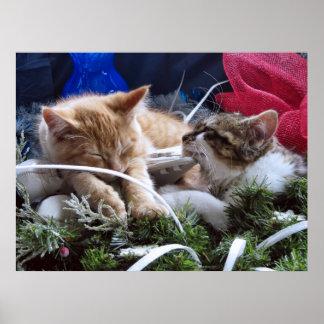 Gatos frescos de la nieve, dos gatitos en amor, pa poster
