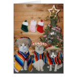 Gatos/gatitos divertidos Feliz Navidad Tarjetón