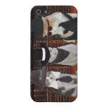 Gatos/gatitos en negro iPhone 5 carcasa