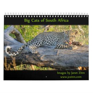 Gatos grandes del calendario de Suráfrica 2015