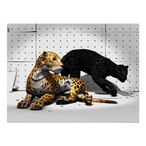 Gatos grandes - leopardos poster