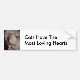 Gatos la mayoría de los corazones cariñosos pegatina para auto