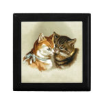 Gatos lindos del vintage caja de recuerdo