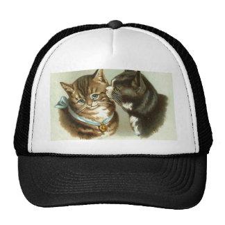 Gatos lindos del vintage gorras de camionero