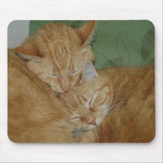 Gatos Mousepad el dormir