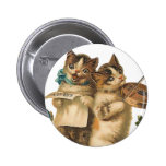 Gatos musicales pin