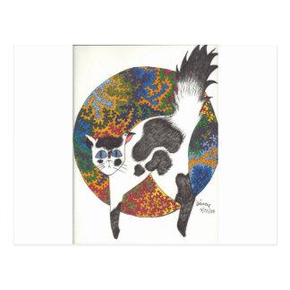 Gatos - negro y blanco tarjeta postal