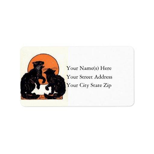 Gatos negros contra etiqueta de dirección anaranja