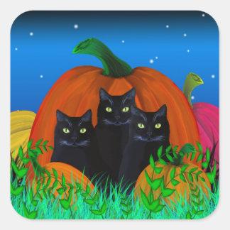 Gatos negros de Halloween con los pegatinas de las Pegatina Cuadrada