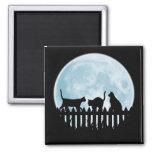 Gatos negros e imán de la luna azul