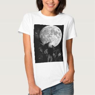 Gatos negros y la luna playera