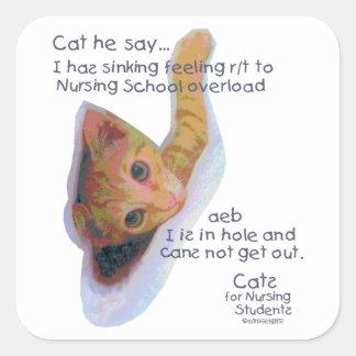 Gatos para los estudiantes de cuidado - I tiene ma Pegatinas Cuadradases