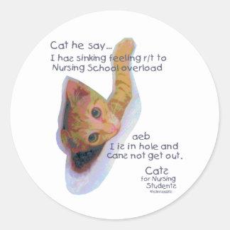 Gatos para los estudiantes de cuidado - I tiene ma Etiquetas Redondas