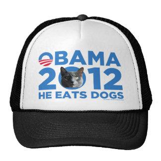 Gatos para Obama Gorros